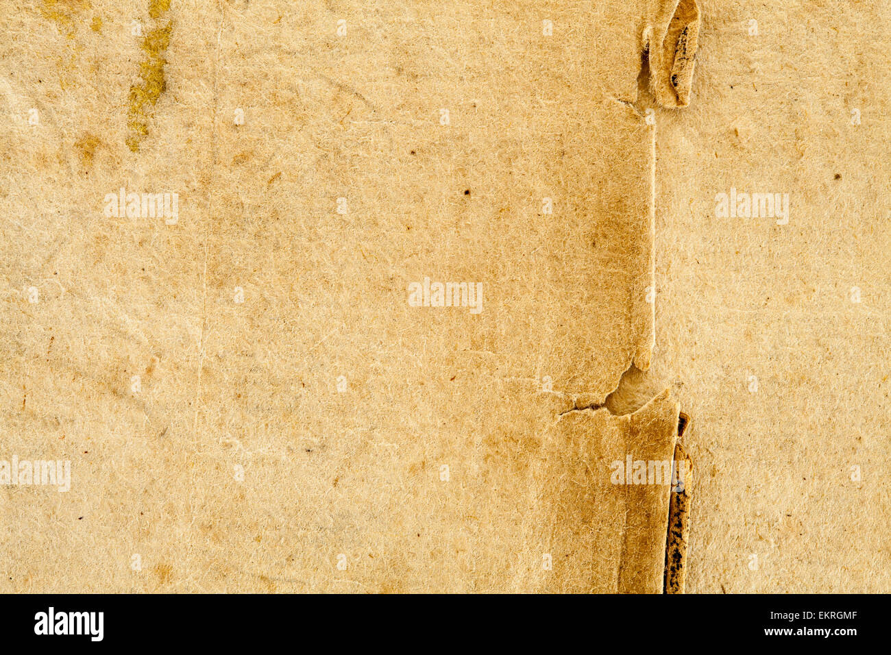 1614 Vintage Antique Retro French Parchment Paper Background In Beige Tan