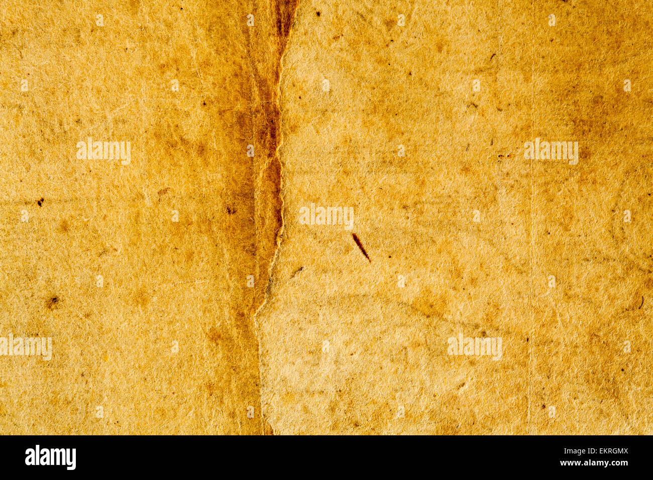 1614 Vintage Antique Retro French Parchment Paper Background in Beige Tan - Stock Image