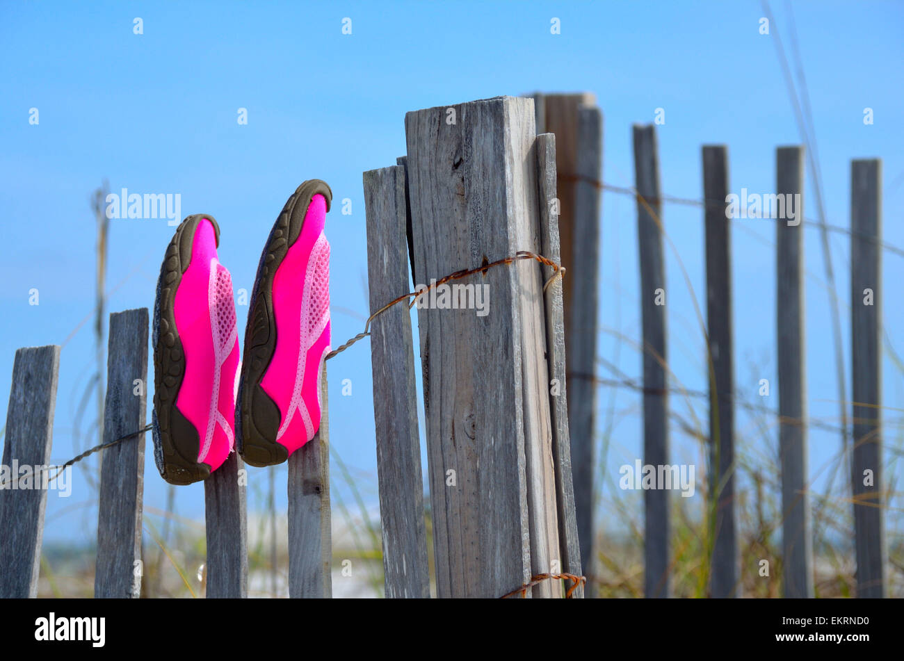 Hot pink beach shoes drying on a worn weathered wooden beach fence - Stock Image