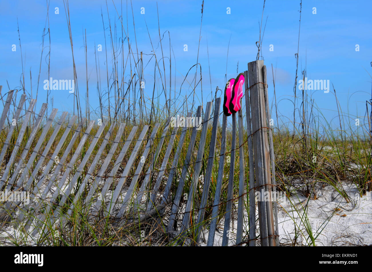 Pink beach shoes drying on a worn weathered fence, set in the white sand dunes of a Gulf of Mexico, Florida beach - Stock Image