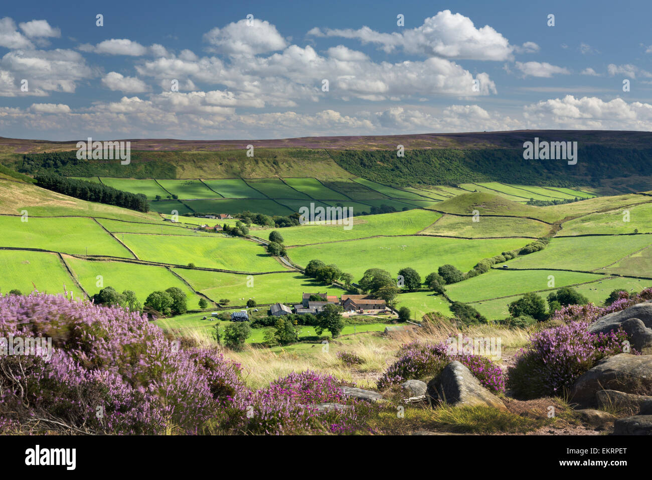 Fryupdale in the North Yorkshire Moors National Park, England. - Stock Image