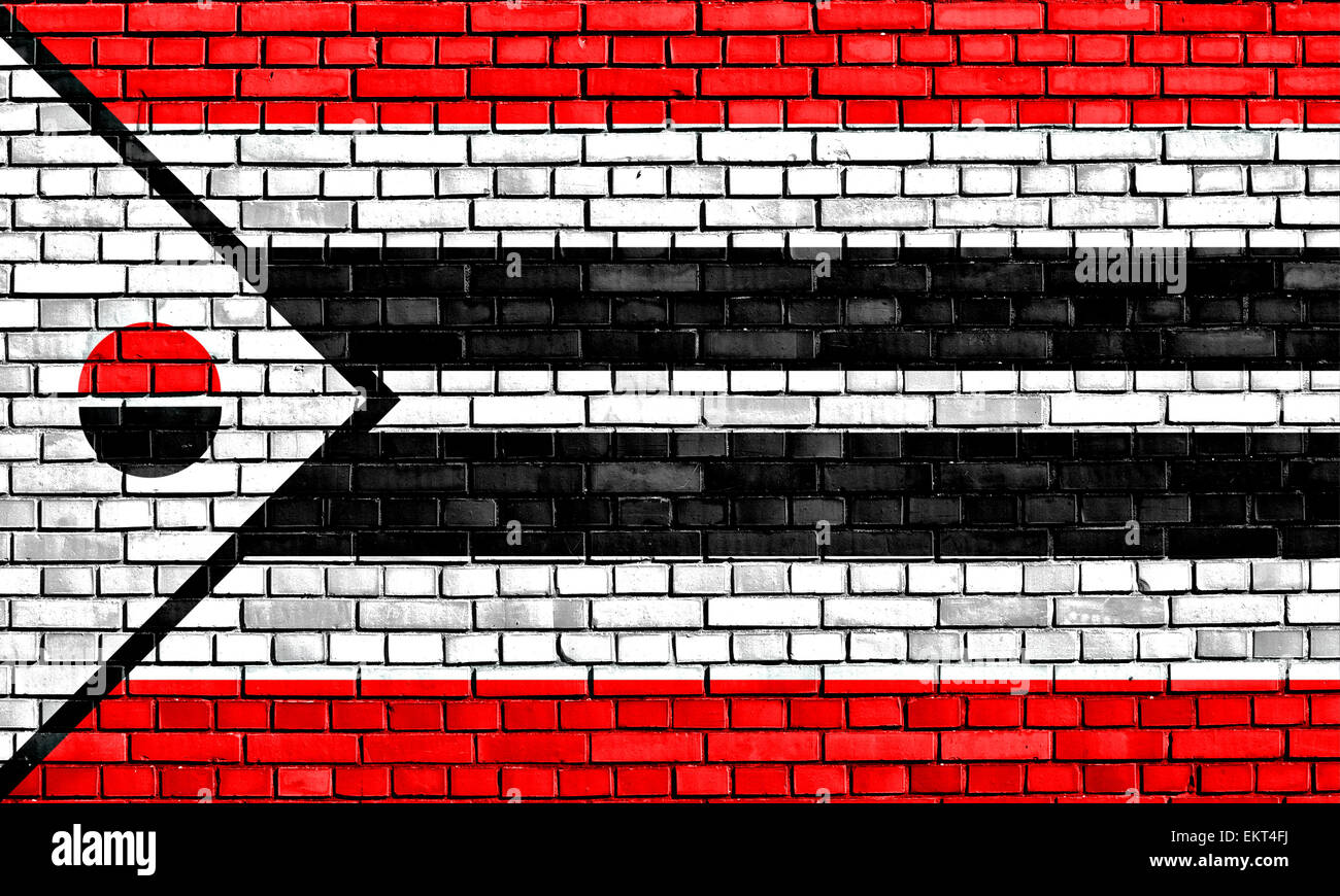 flag of Arapaho painted on brick wall - Stock Image