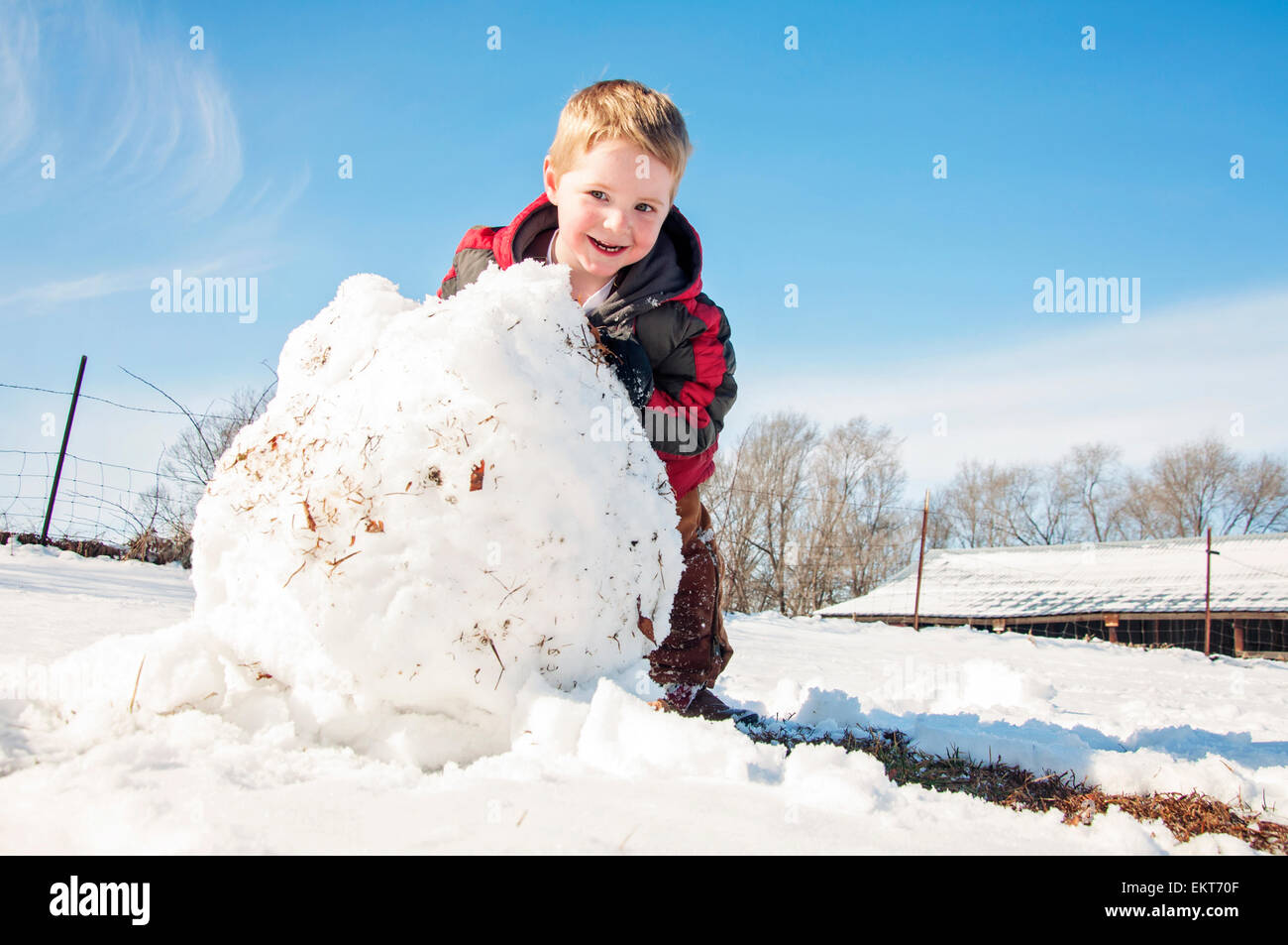 Child rolls large Snowball to make snowman - Stock Image