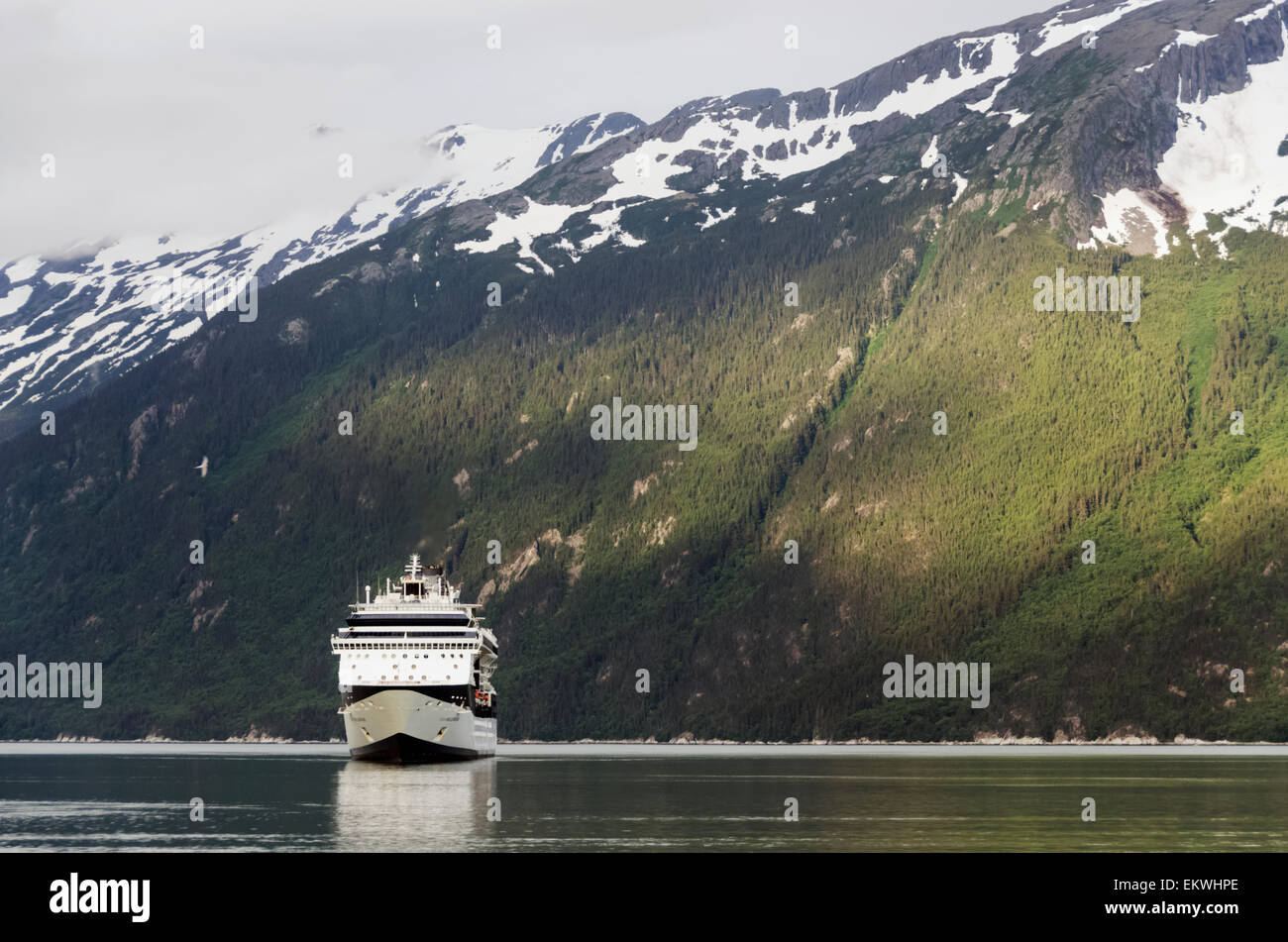 Alaska,Cruise Ship,Skagway,Taiya Inlet - Stock Image
