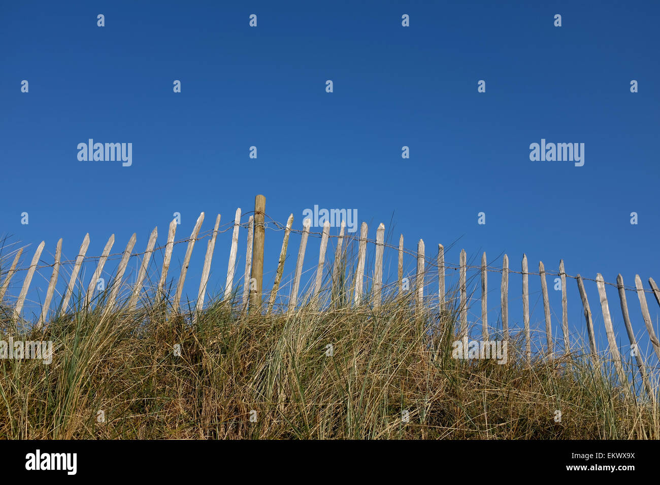 Wooden fence with a blue sky and long grass - Stock Image