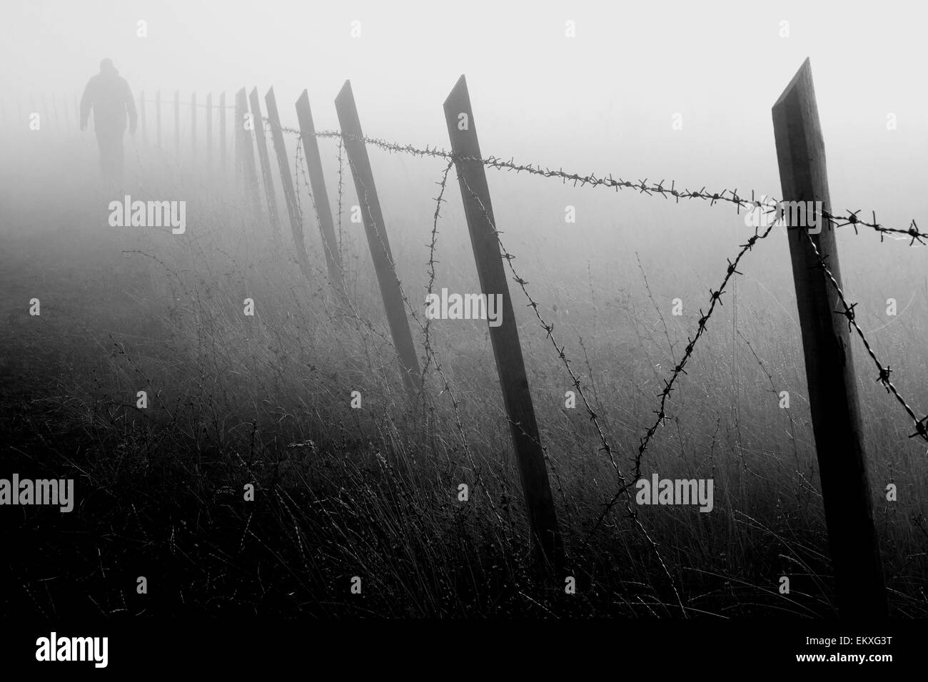 Man walking near barbed wire fence in dense fog - Stock Image