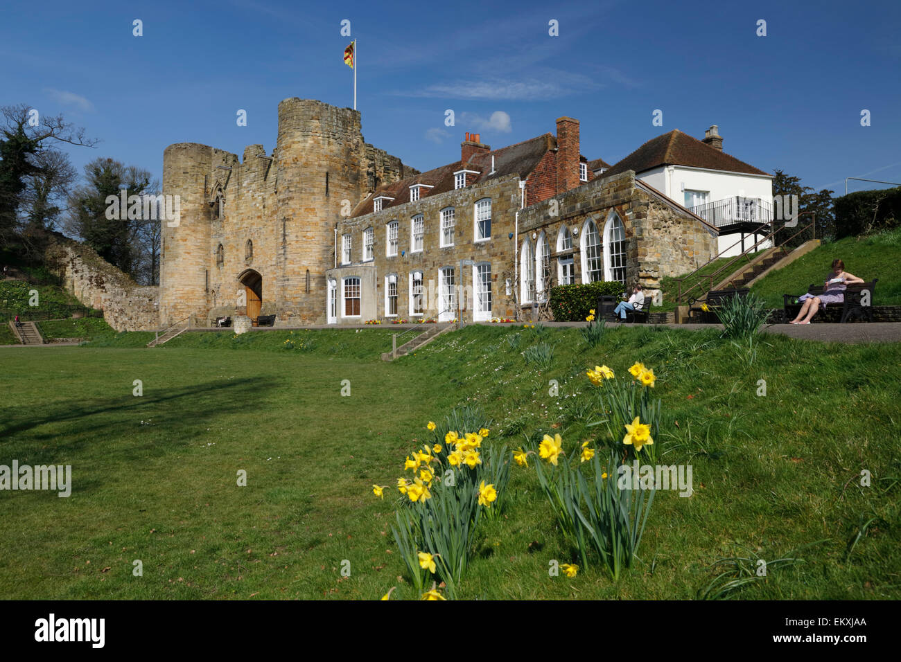Tonbridge Castle with Daffodils, Tonbridge, Kent, England, United Kingdom, Europe - Stock Image