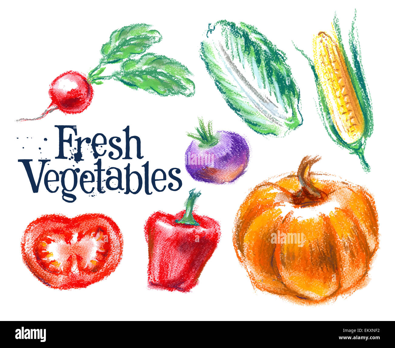 vegetables vector logo design template fresh food or harvest icon