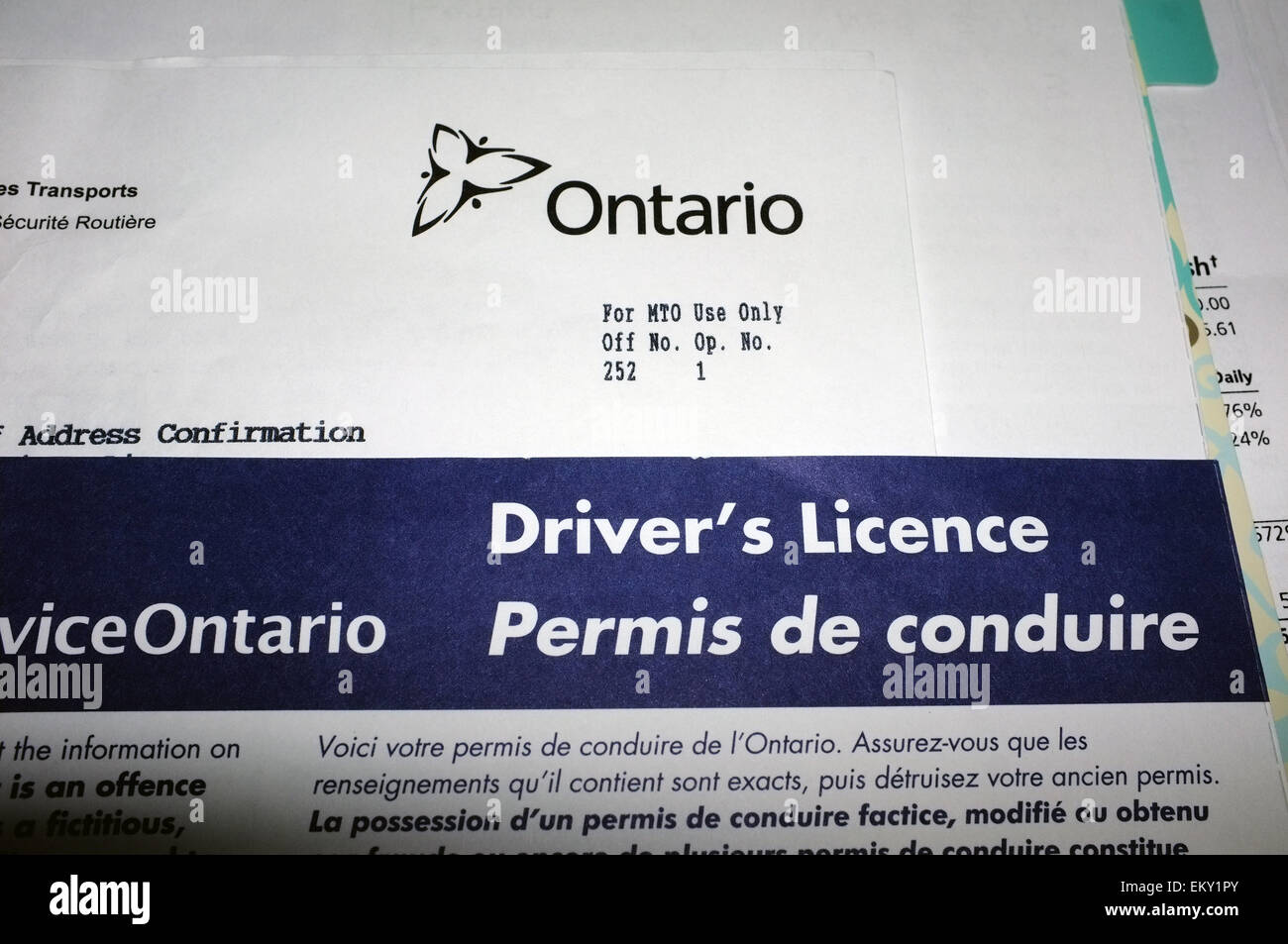 Ontario driver's license paperwork Stock Photo: 81114067 - Alamy
