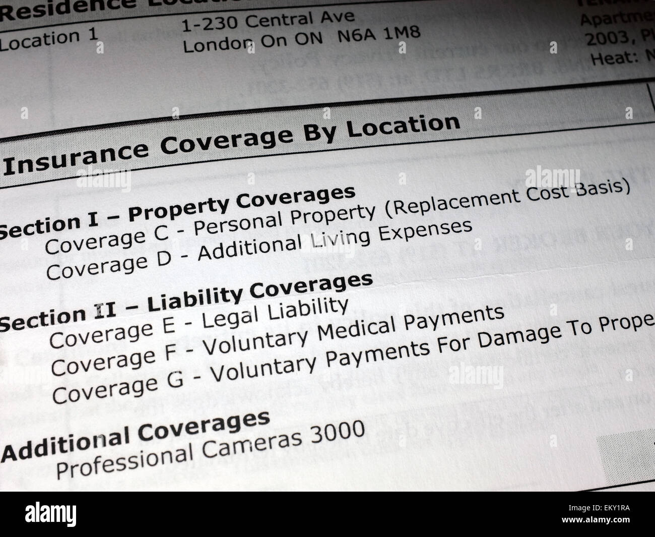 The details on an insurance policy paperwork. - Stock Image