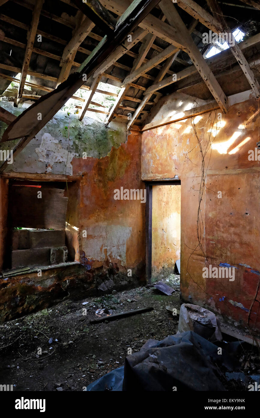 Shabby interior of old abandoned gate lodge house in west Cork Ireland - Stock Image