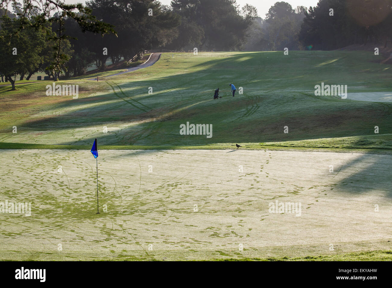 Rancho Park golf course, golf courses and landscaping are a major user of water. Los Angeles, California, USA - Stock Image
