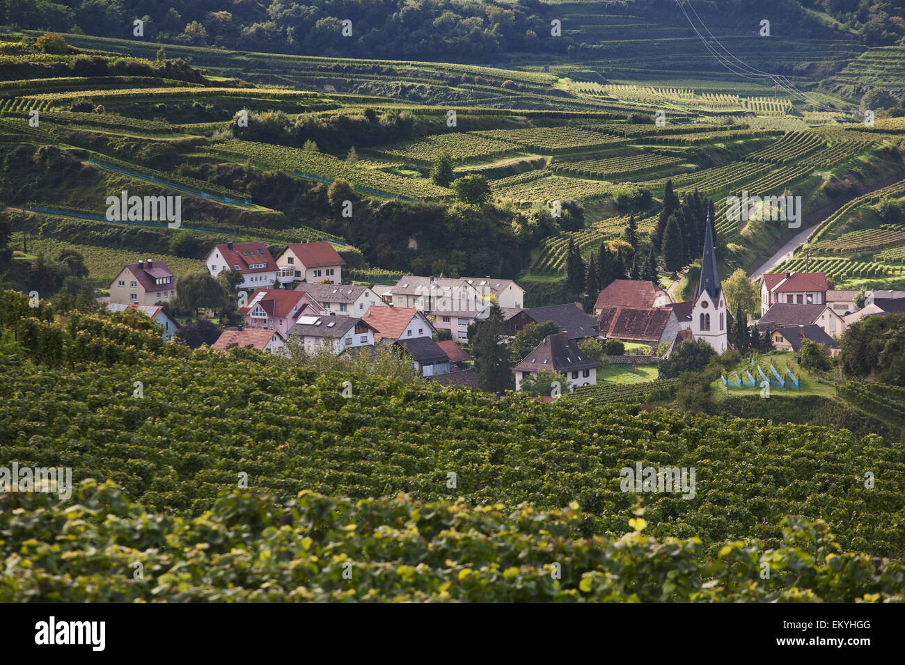 Small German Village With A Church Surrounded By Vineyards V Stock
