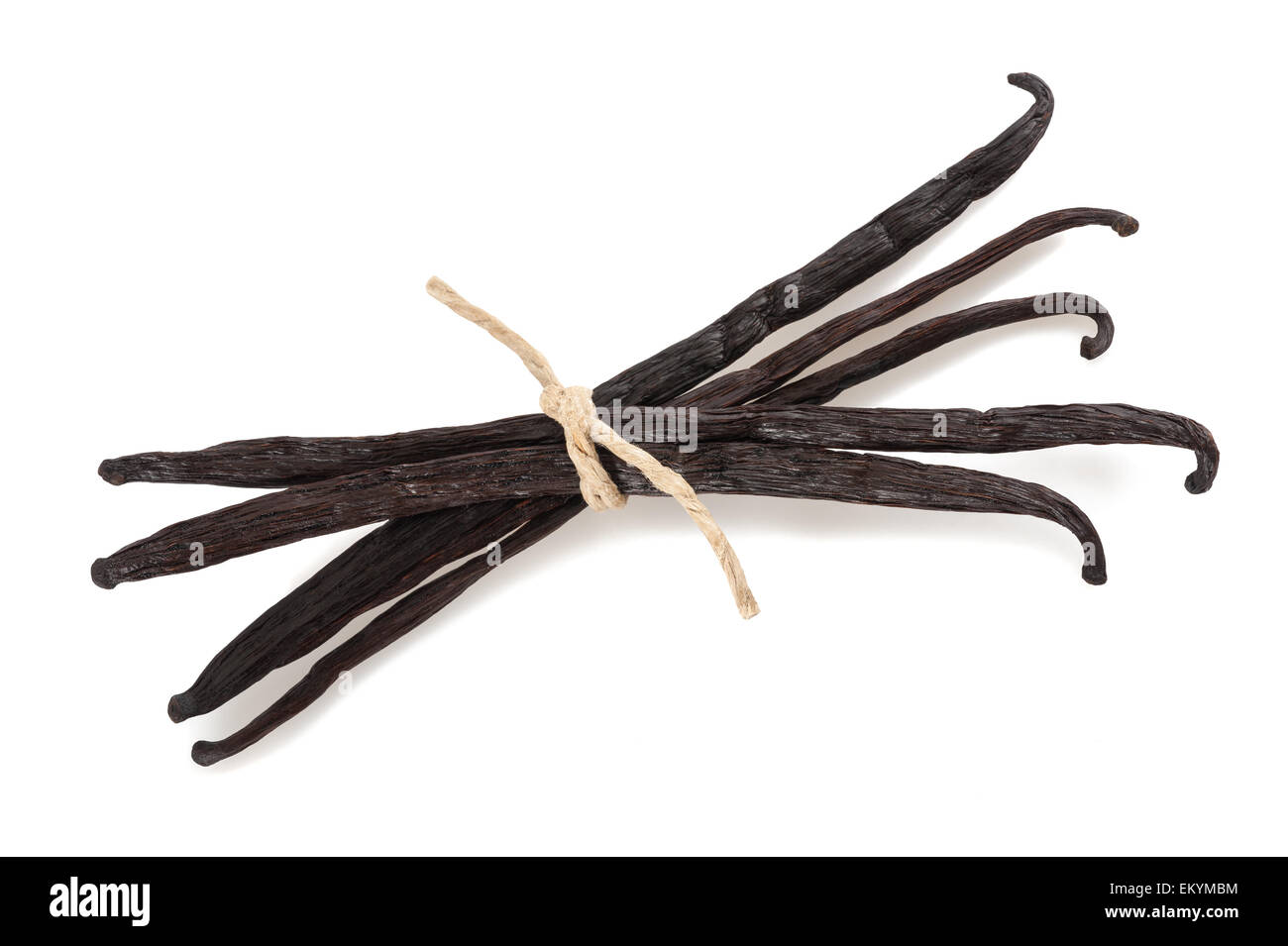tied vanilla sticks isolated  on white background - Stock Image