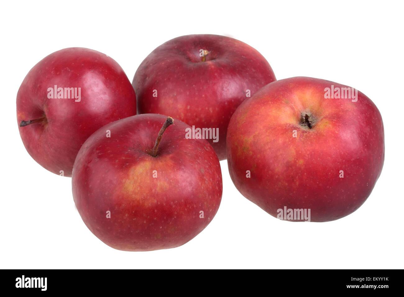 Apple variety Danzig Kant - Stock Image