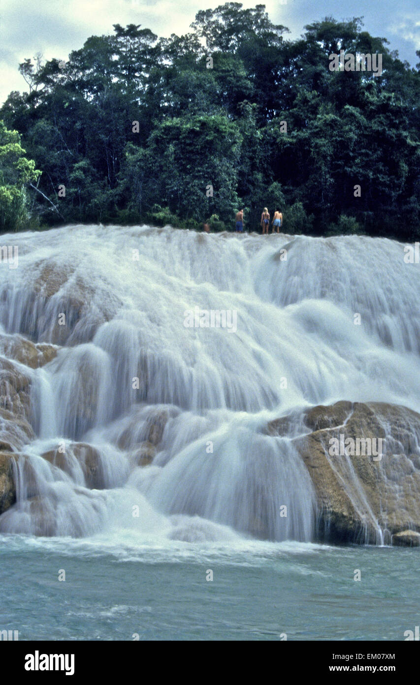 Mexico - Aqua Azul cascades in Chiapas near Palenque on the river Tulija are a must for tourists who can swim in - Stock Image