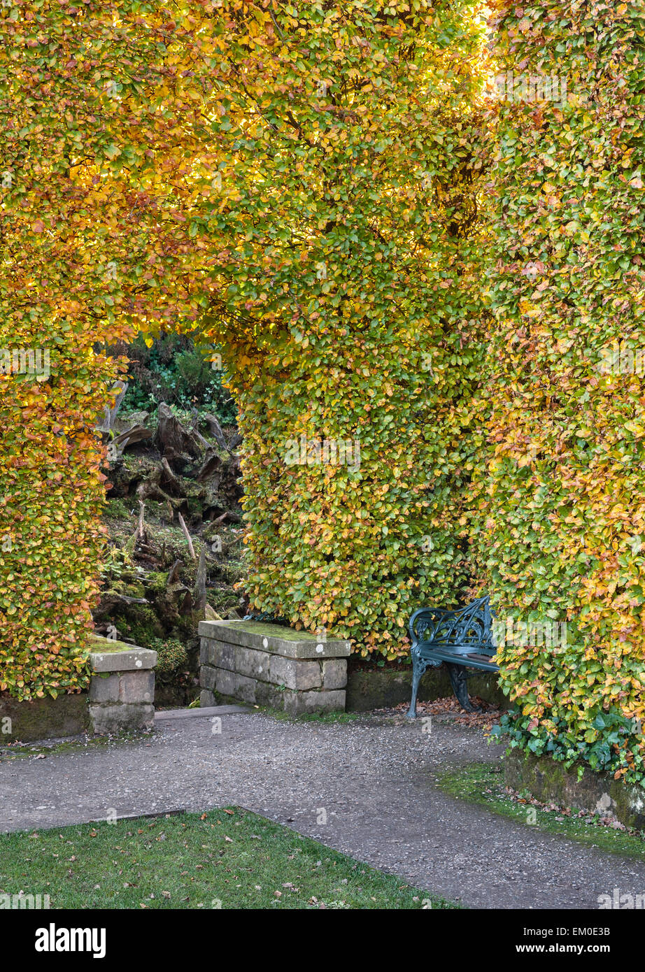 Biddulph Grange Garden, Staffordshire, UK. The entrance to the Stumpery, where paths are lined with huge decaying - Stock Image