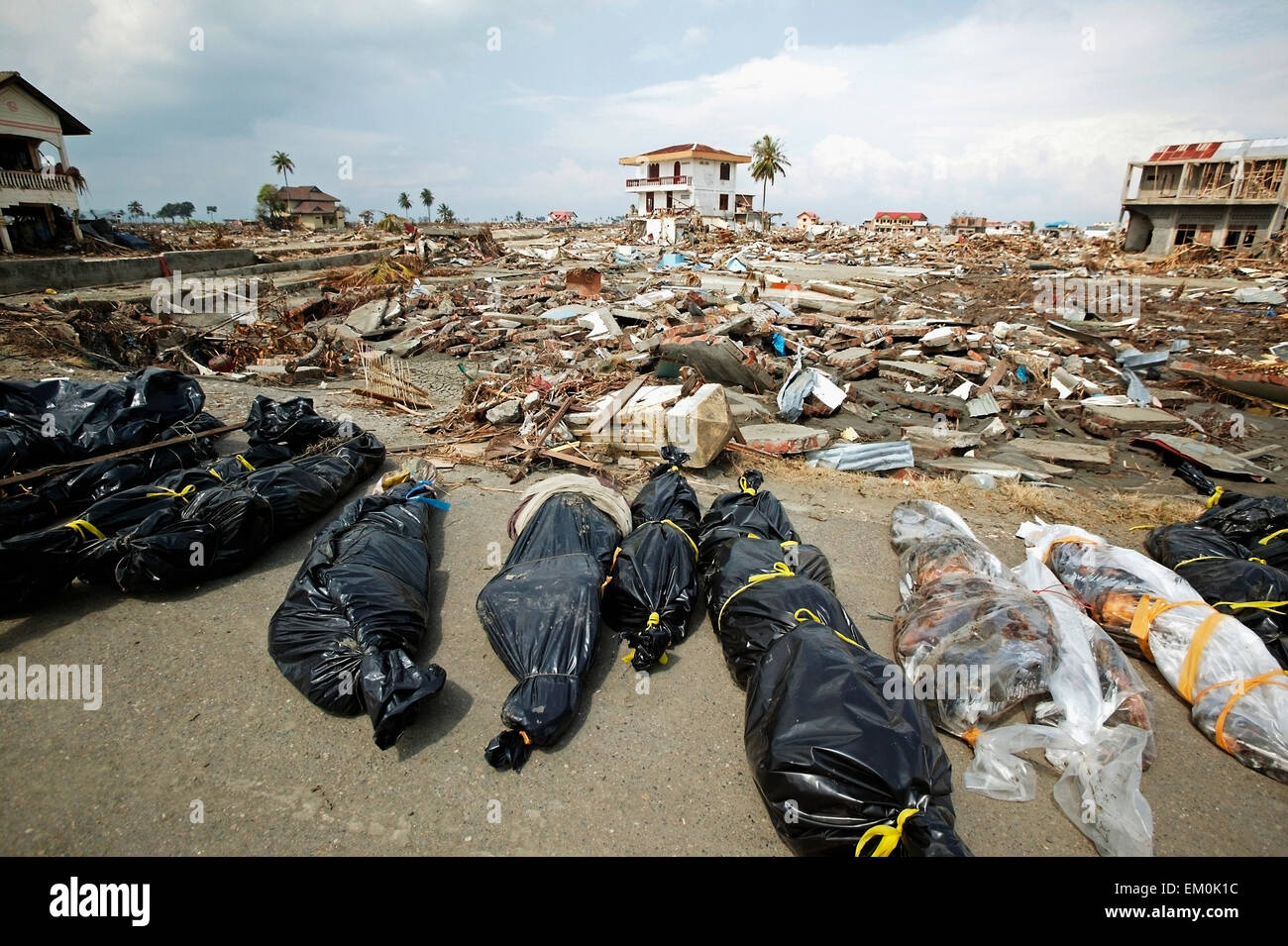 Body Bags And Debris After The Indian Ocean Earthquake And