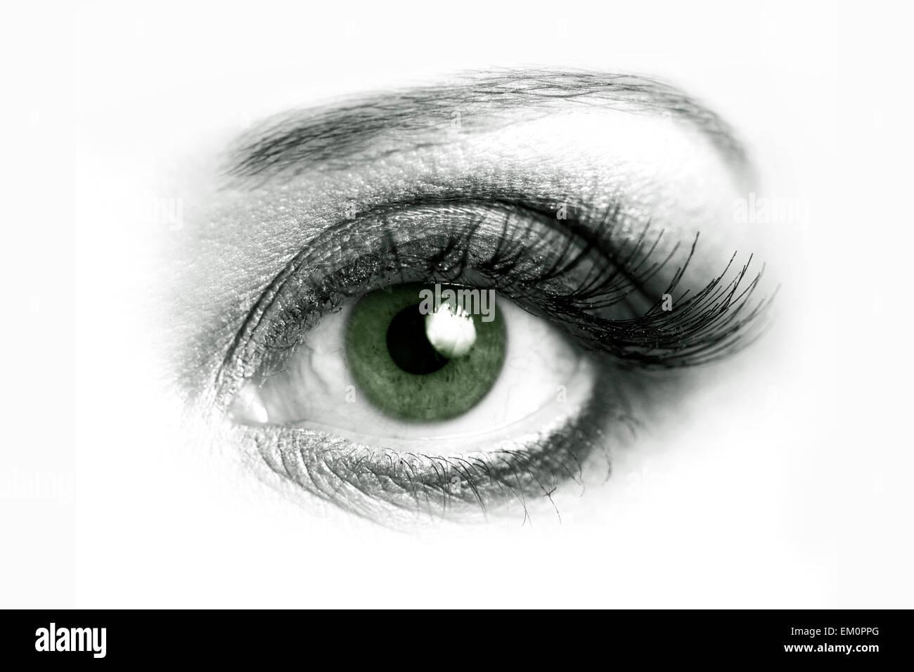 Open eye closeup - Stock Image