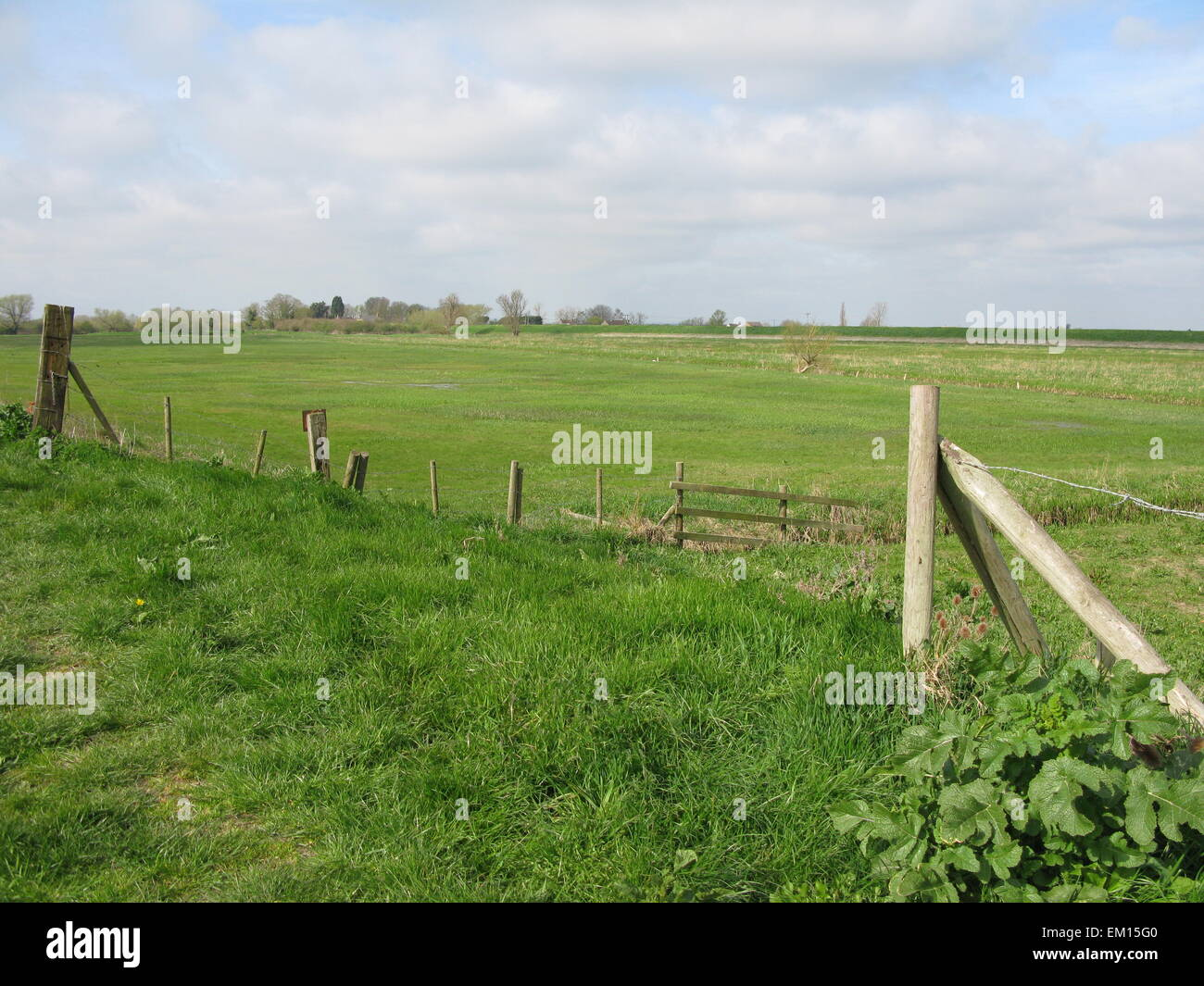 The Washes at Sutton Gault - Stock Image