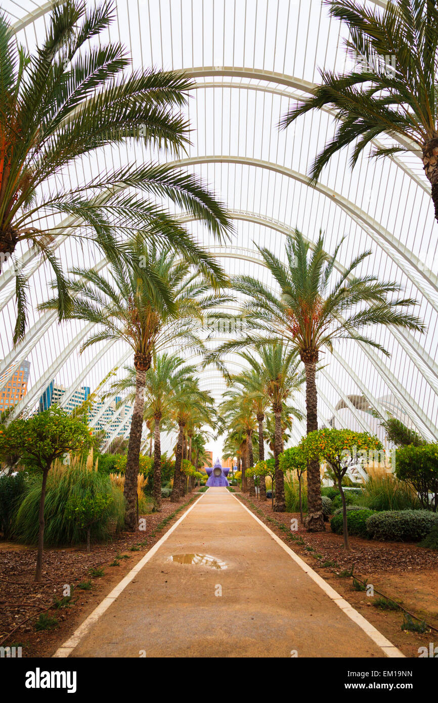 Inside L'Umbracle a landscaped walk with plant species indigenous to Valencia - Stock Image
