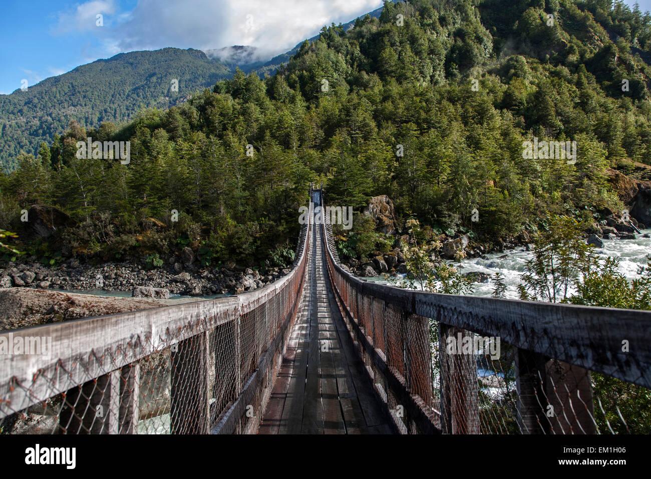 Suspension bridge. Queulat National Park. Aysén Province. Chile - Stock Image