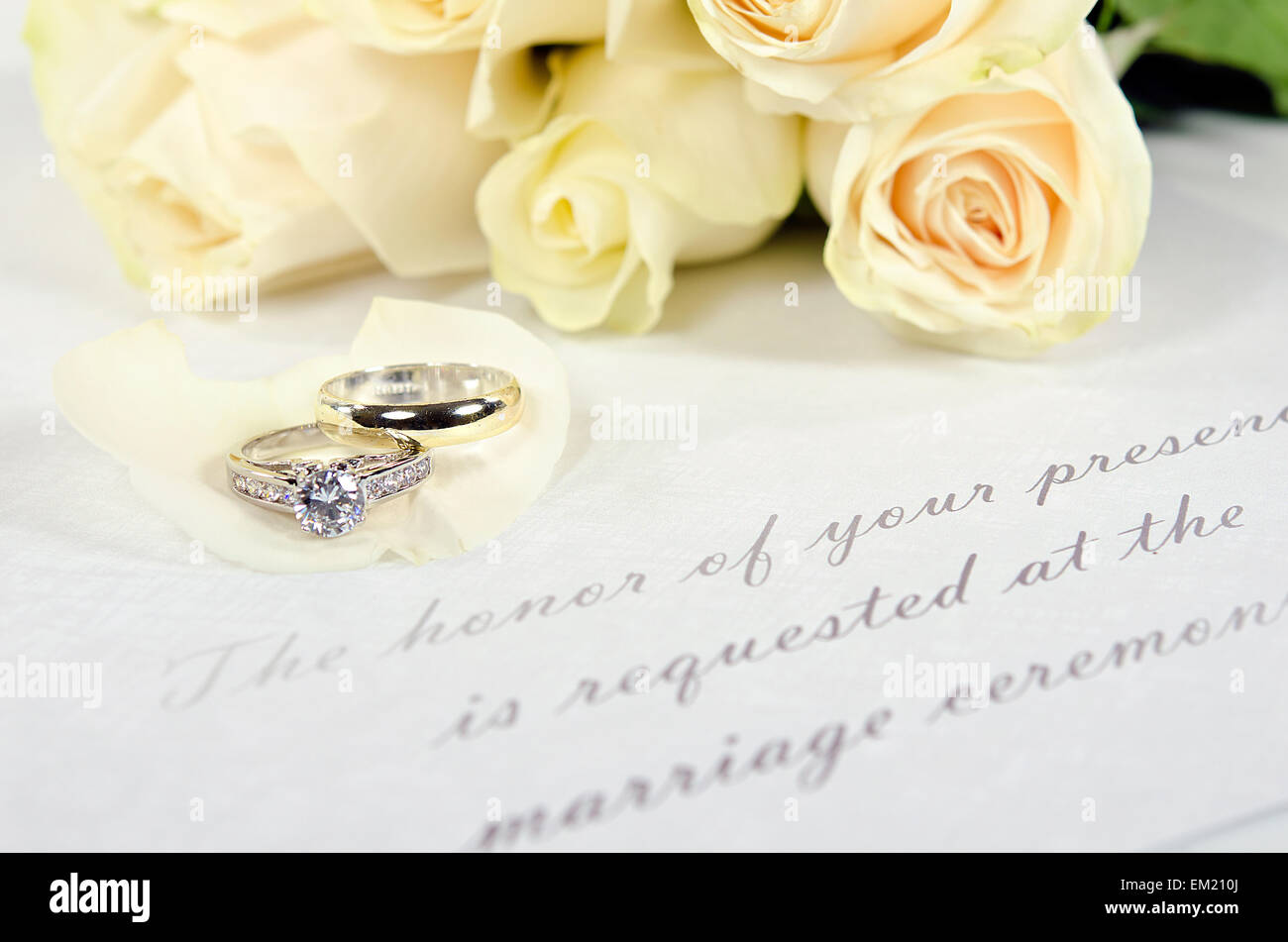 Wedding Rings On White Rose Petal With Formal Invitation: Ivory Roses And Wedding Rings At Reisefeber.org