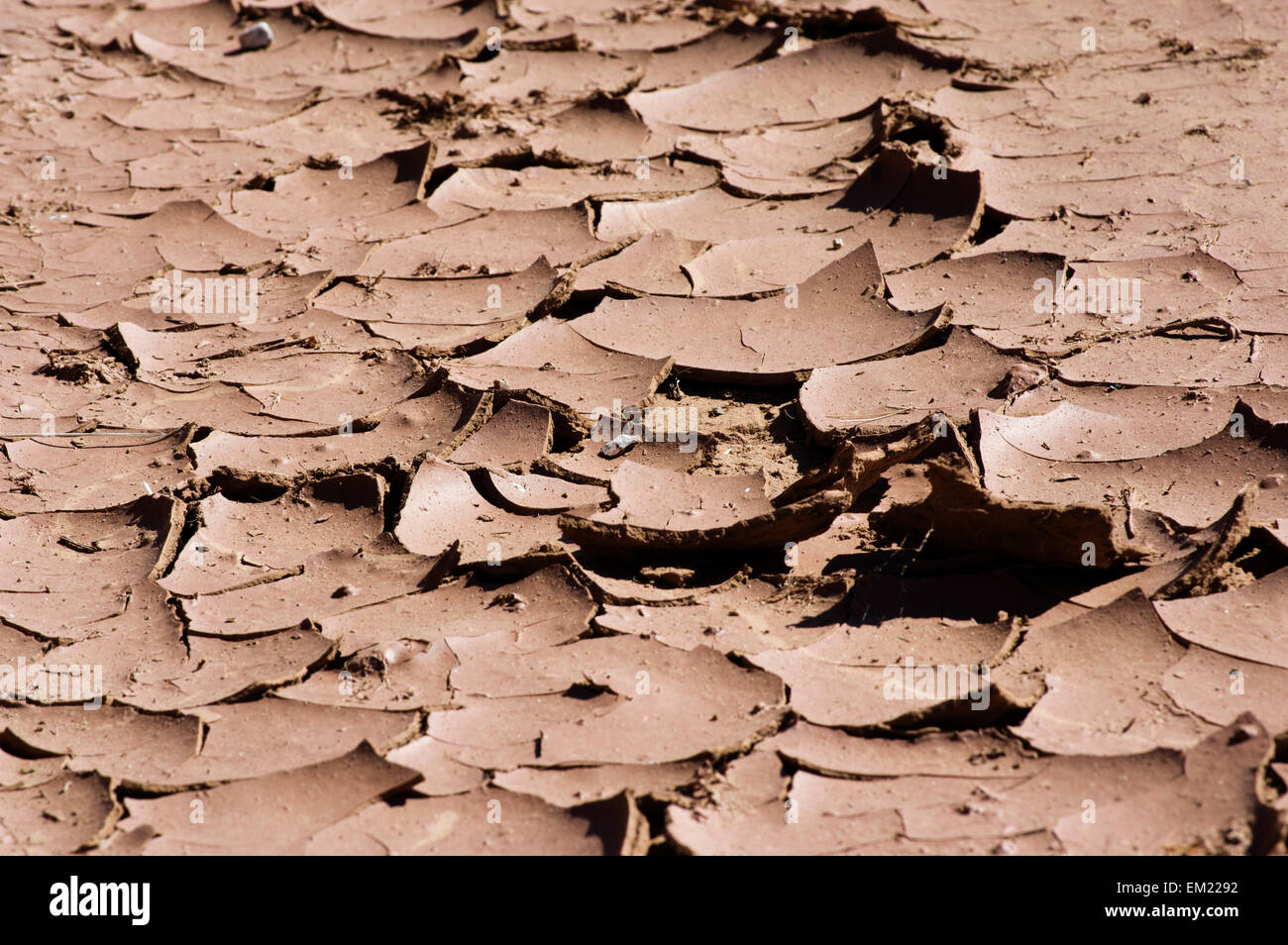 Cracked earth in Southern California from water shortage drought - Stock Image