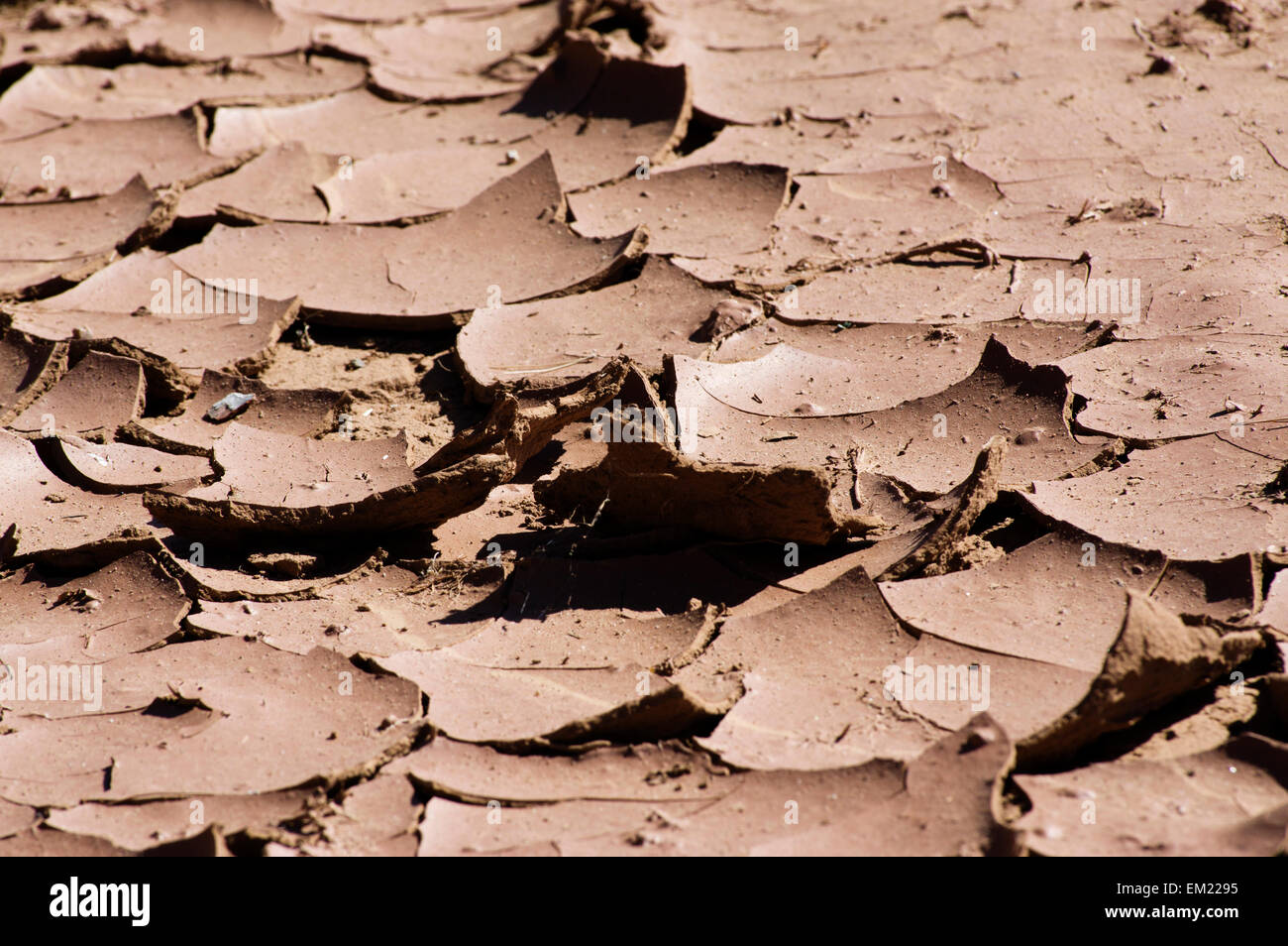 Cracked earth in Southern California during a major drought from water shortage. - Stock Image