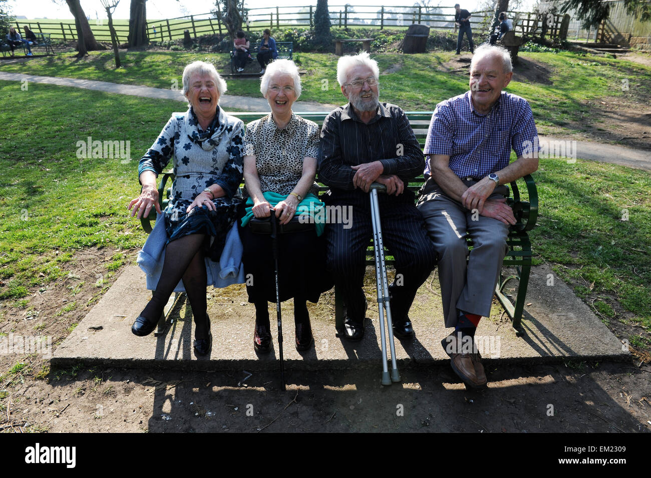 Four elderly friends laughing on a bench in Great Ayton, North Yorkshire, England, Great Britain, North Yorkshire, - Stock Image