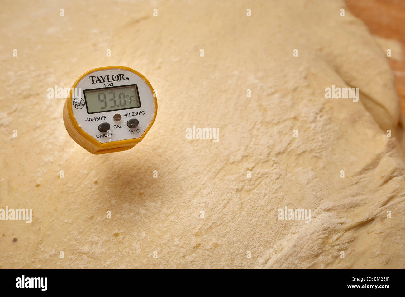 Bread dough being tested for proper temperature at a commercial bakery in Pennsylvania, USA - Stock Image
