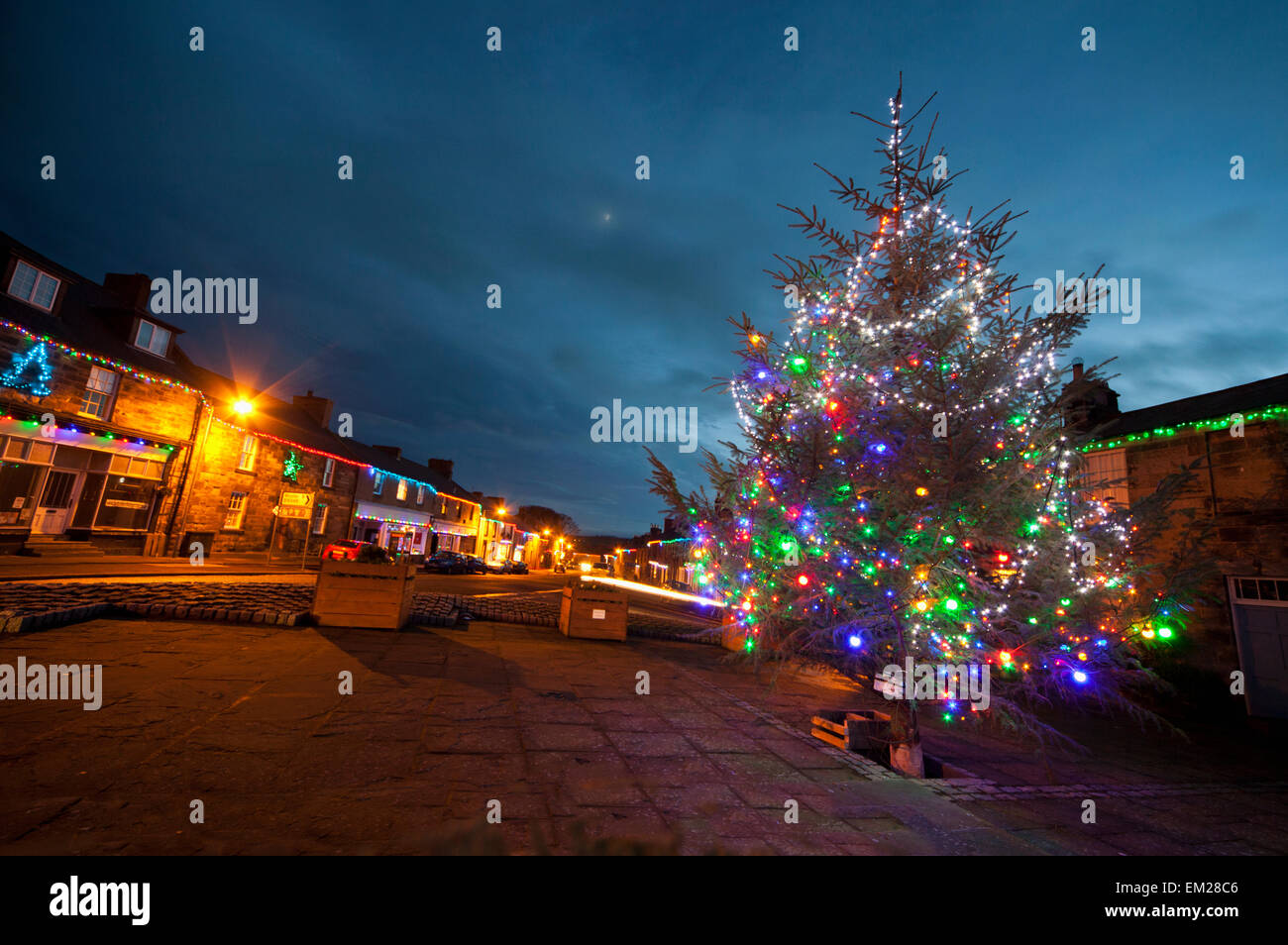 An outdoor tree decorated in colourful lights for christmas belford an outdoor tree decorated in colourful lights for christmas belford northumberland england aloadofball Image collections