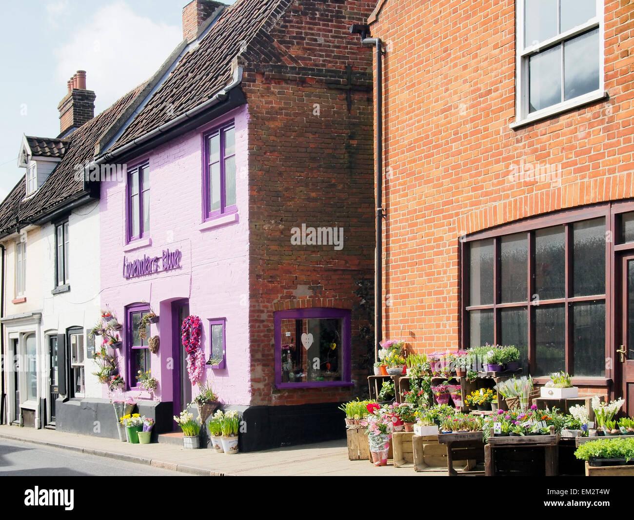 The vivid shop front of the Lavenders Blue florist shop in Red Lion Street, Aylsham, Norfolk - Stock Image