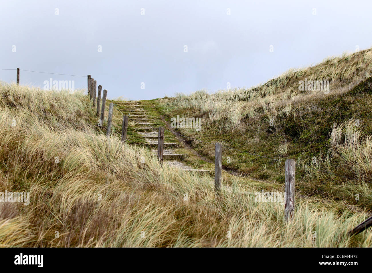 Elements of fence on the beach, North Holland, Europe - Stock Image