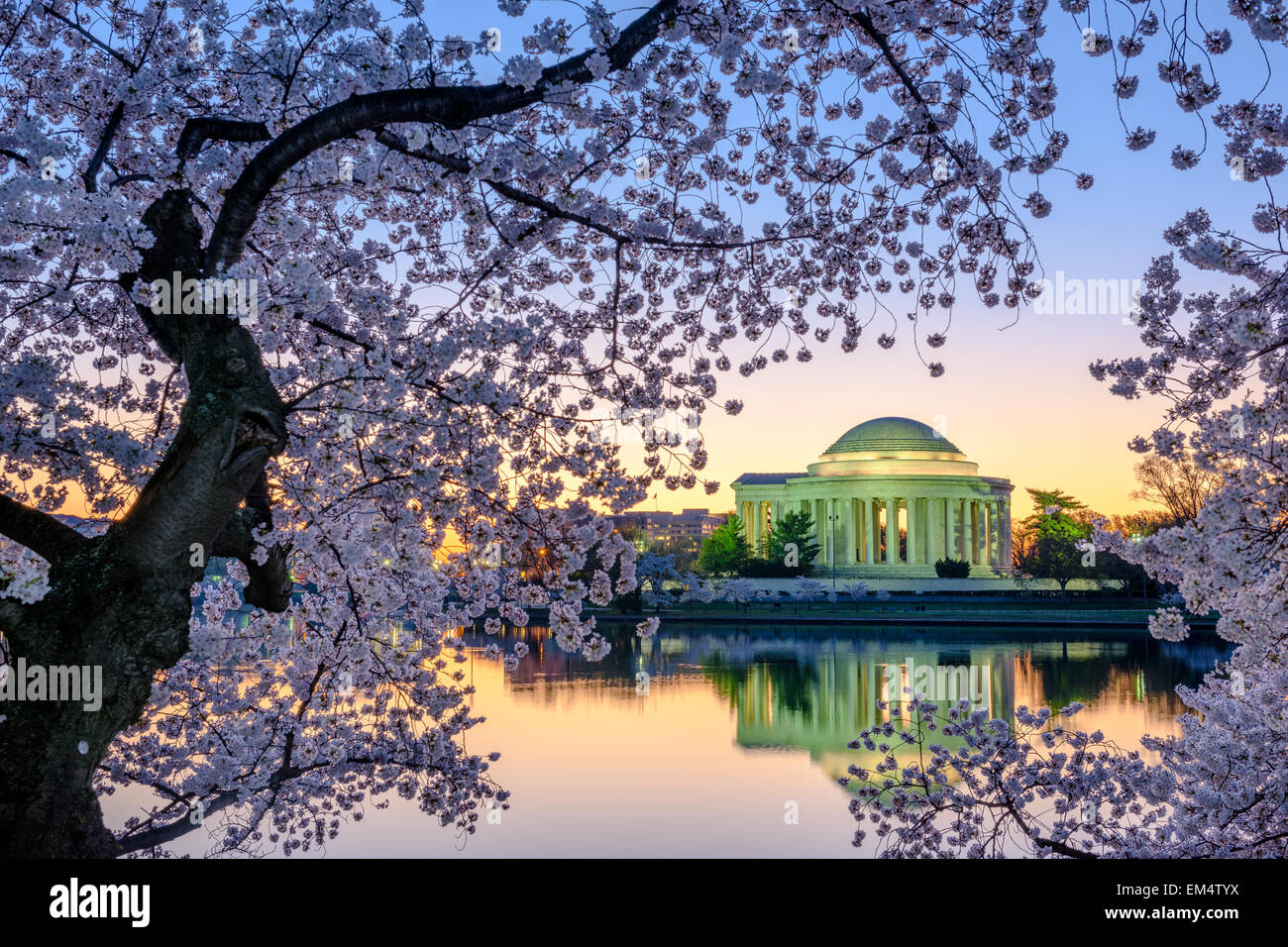 Washington, DC at the Jefferson Memorial during spring. - Stock Image
