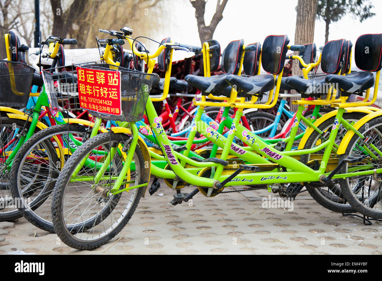 Bicycles for rent at Houhai Park; Shichahai, Beijing, China - Stock Image