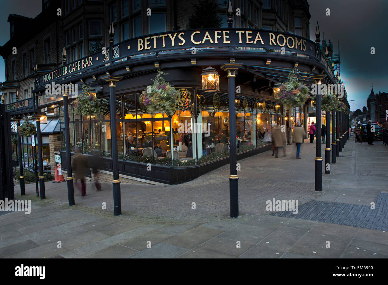 UK, England, Yorkshire, Harrogate, Parliament Street, Betty's Tea Rooms at Christmas, night view - Stock Image