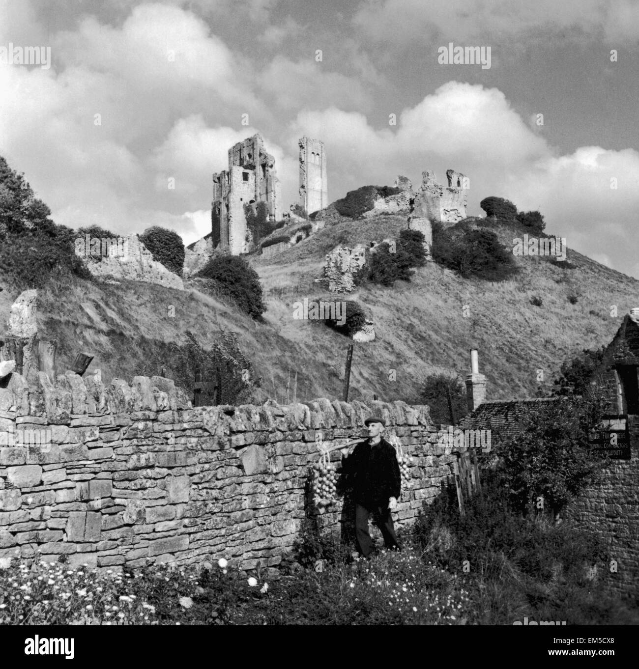 Corfe Castle Dorset rises behind a drystone wall. Old man balancing onions on shoulder Circa 1952 - Stock Image