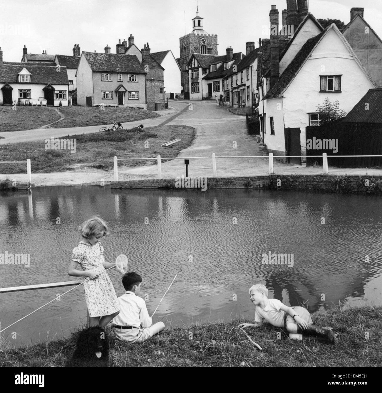 Children fishing for tadpoles and minnows in the village pond at Finchingfield Essex Circa 1952 - Stock Image