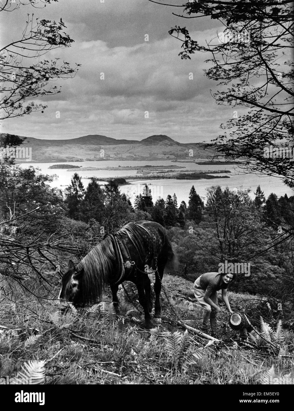 Woman and horse at Loch Lomond. Loch Lomond is a freshwater Scottish loch which crosses the Highland Boundary Fault. - Stock Image