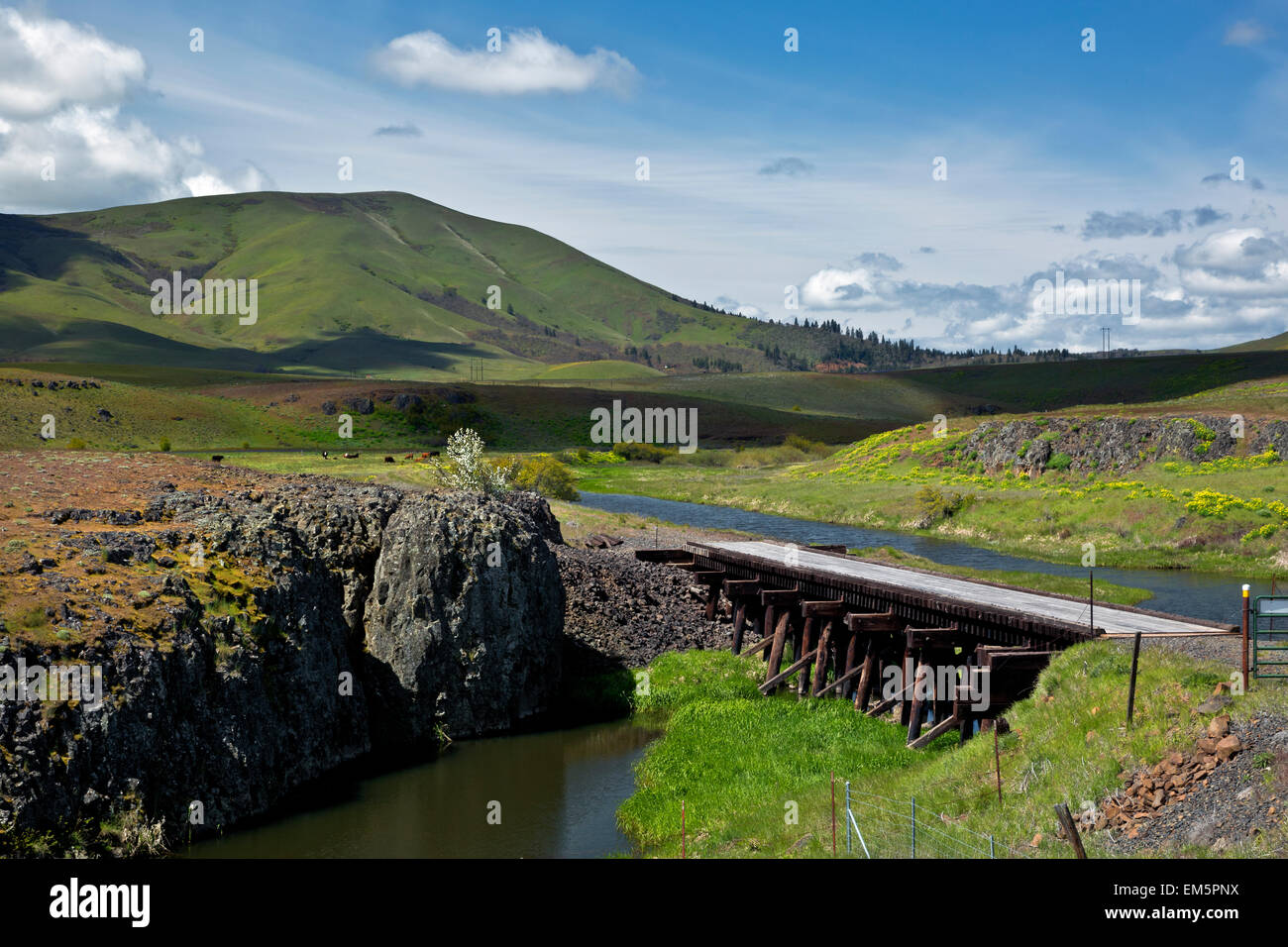 WA10317-00...WASHINGTON - Swale Creek at the Harms Road Trail Access for the Klickitat Trail. - Stock Image