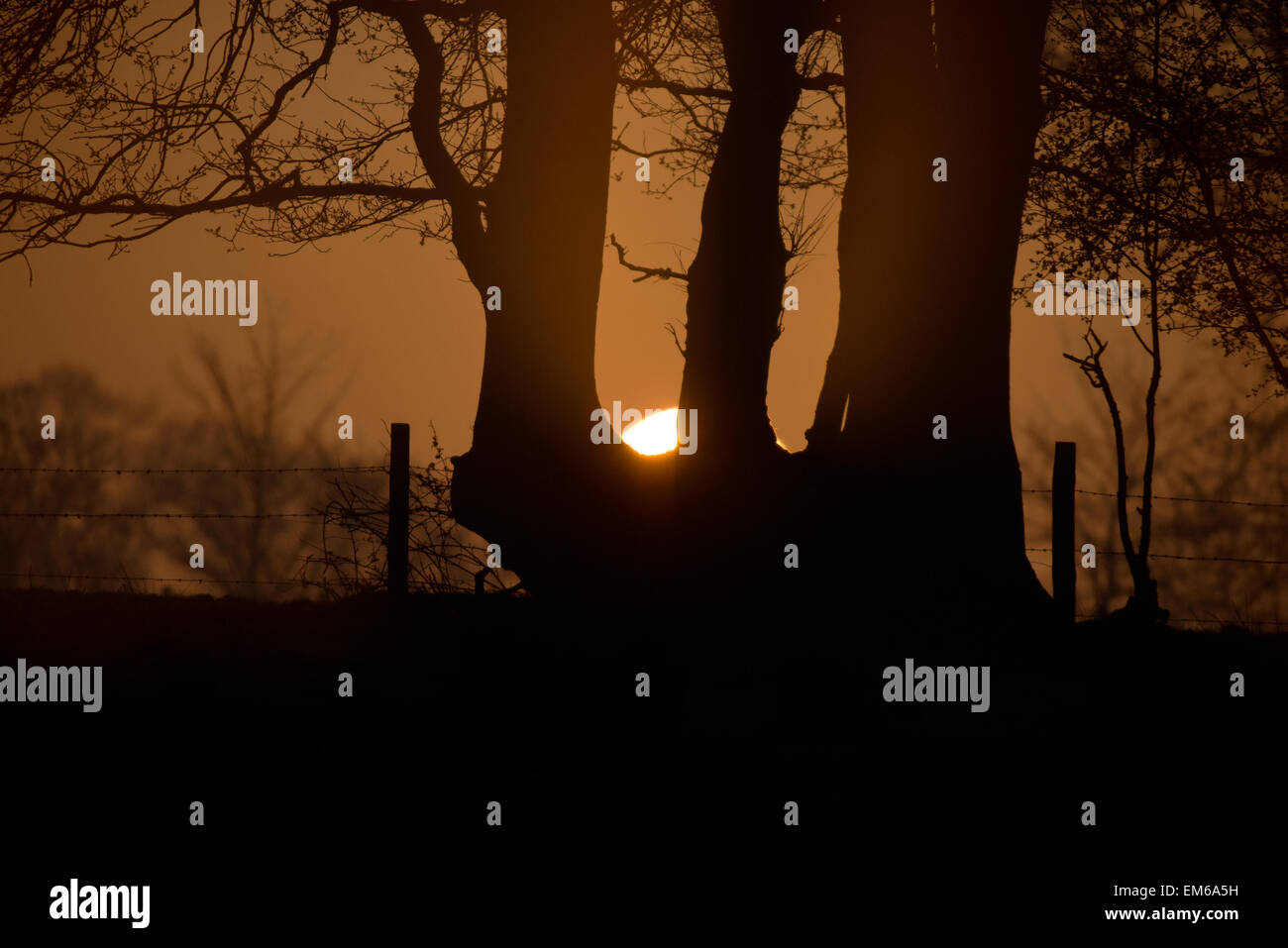 A Landscape View of a Sunrise at Pulborough Brooks, Pulborough,West Sussex,  Great Britain, England, UK, GB - Stock Image