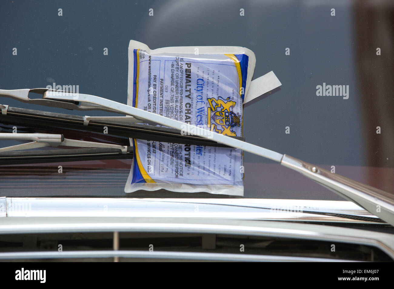 City of Westminster parking ticket, penalty charge notice - Stock Image