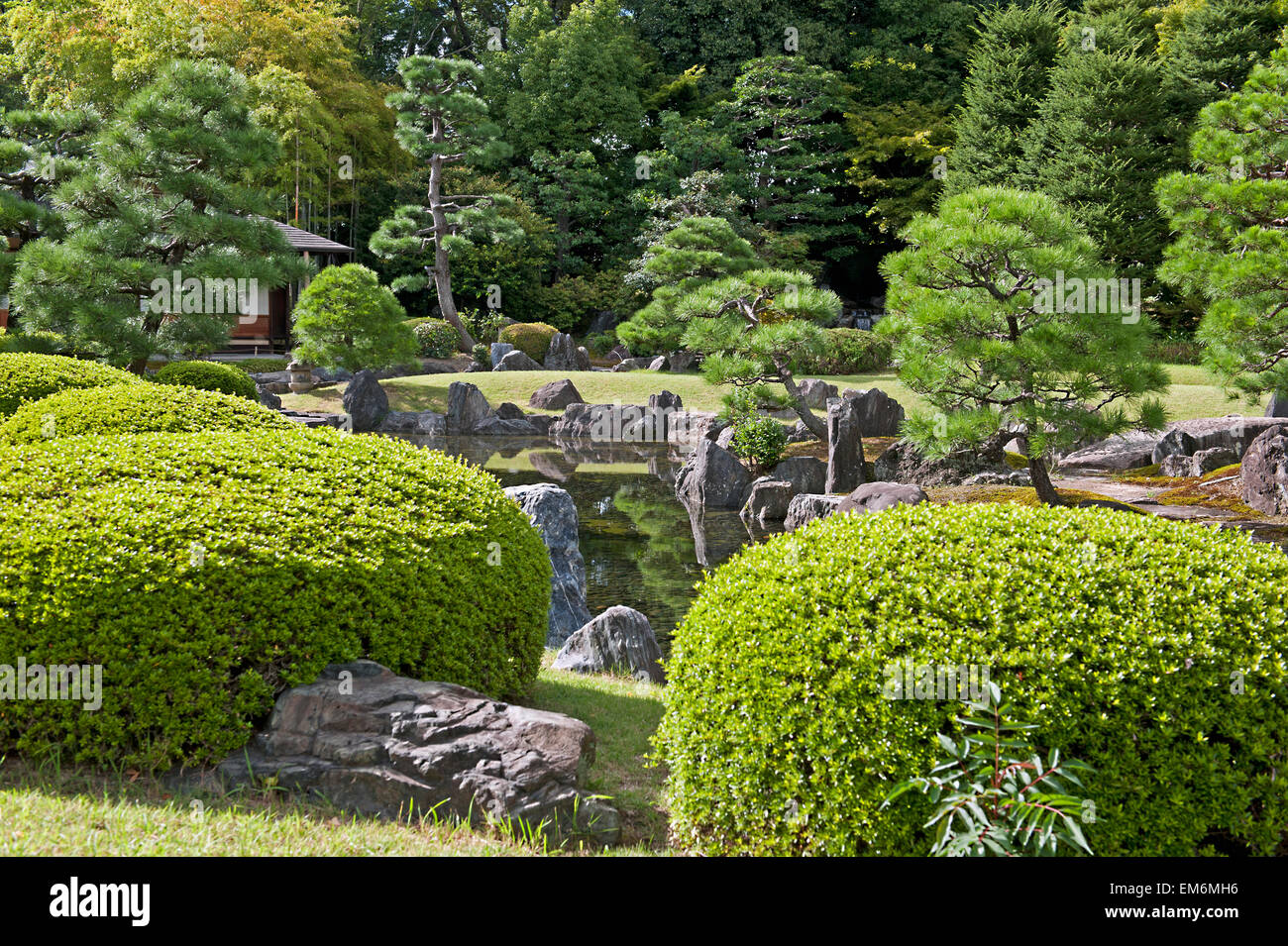 Delightful Japan, Plants And Rocks In A Decorative Garden Area; Tokyo