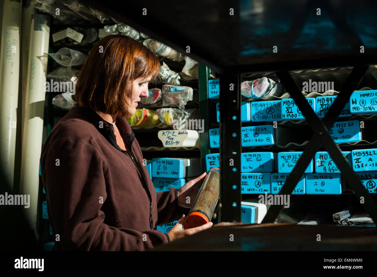 A woman inspects sediment cores at a sedimentology laboratory in Boulder, Colorado. - Stock Image