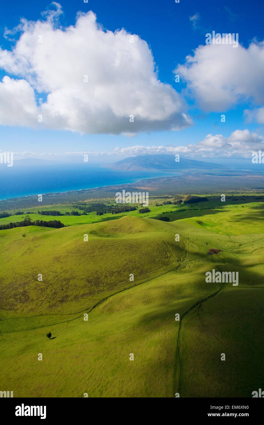 Hawaii, Maui, Lush meadows of the Ulupalakua Ranch looking towards the central Maui isthmus and West Maui Mountains - Stock Image