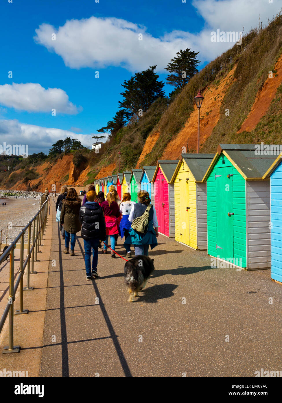 Holidaymakers walking along the Esplanade in Seaton Devon England UK with brightly coloured beach huts to one side - Stock Image