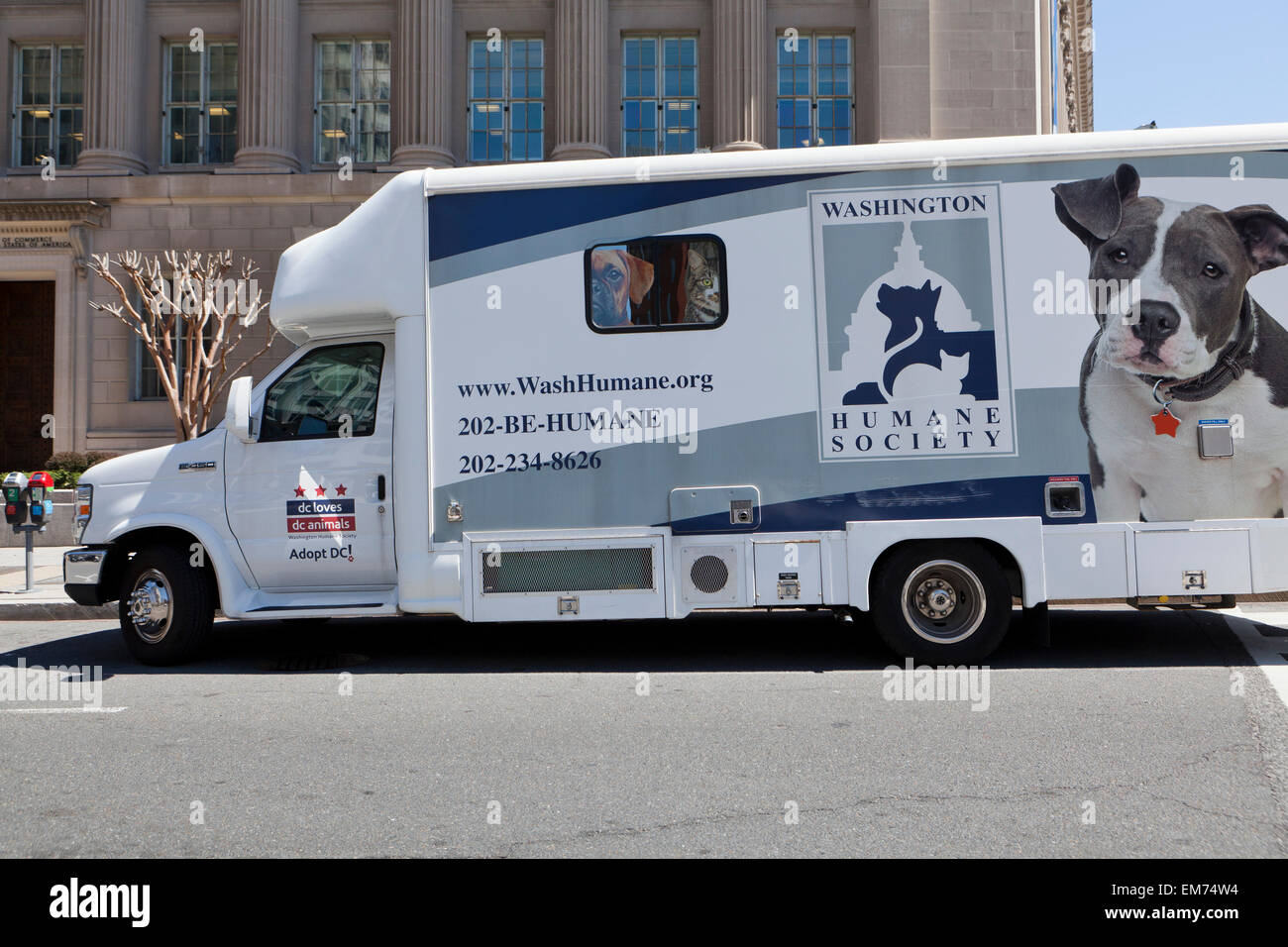 Washington humane society van - Washington, DC USA - Stock Image