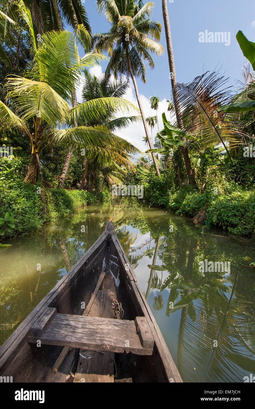 Small wooden boat pushes through a palm-lined canal, backwaters, Champakulam, Kerala, Malabar Coast, South India, Stock Photo