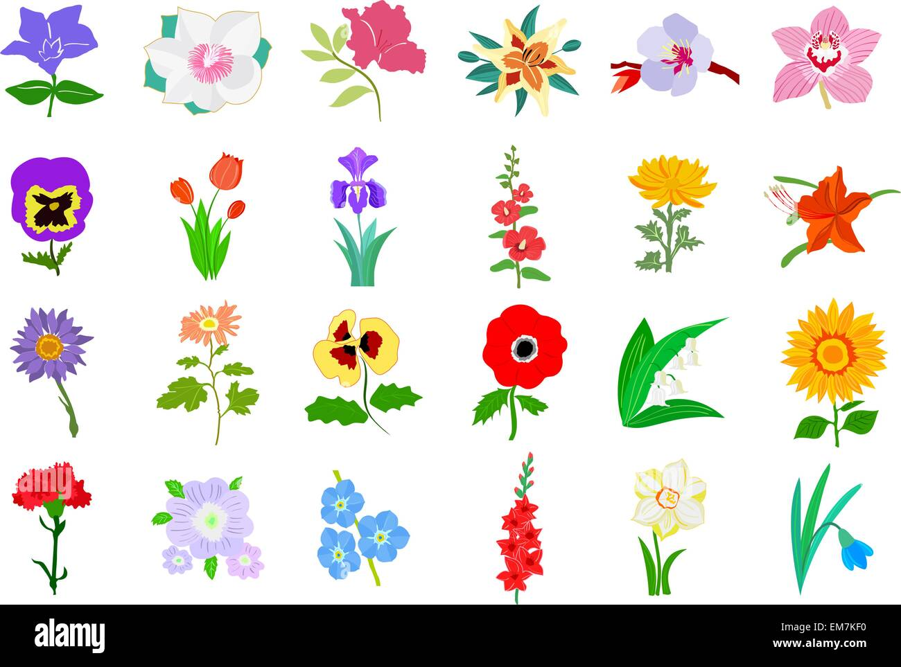 Set of colored illustration of flowers - Stock Vector